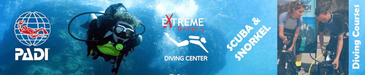 Extreme Divers Training School